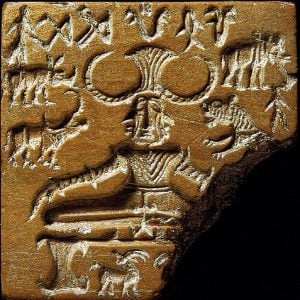 Indus Valley soapstone seal – Health and Fitness History